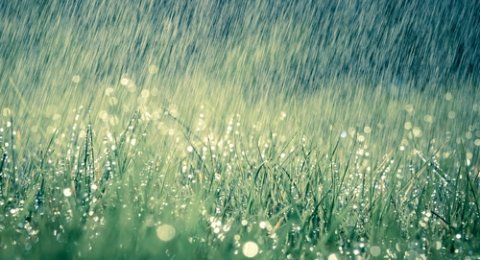 Air Hujan. 7 Macam Air yang Bisa Digunakan untuk Bersuci atau Thaharah